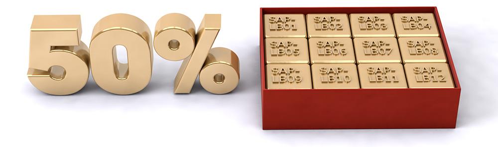 Weihnachtsaktion_RBS-eContent_SAP_Grundlagen_50%